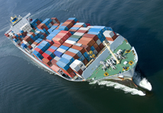 Logistics & Shipment